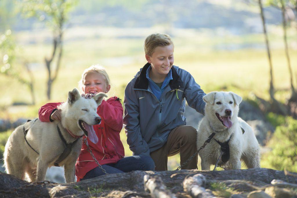 Sommerleir med hunder på Langedrag. FOTO: Langedrag Naturpark