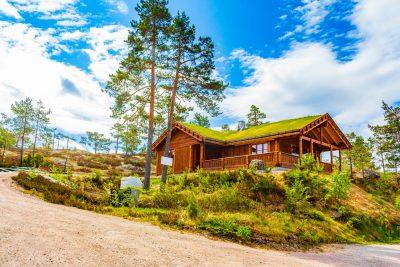 Stor hytte ved Treungen i Nissedal. FOTO: Shutterstock