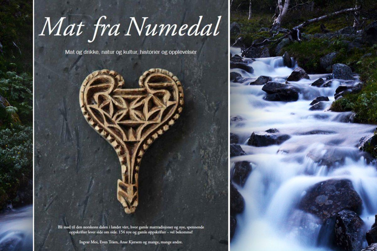 Mat fra Numedal av Ingvar Moi, Even Tråen, Anse Kjersem og mange, mange andre
